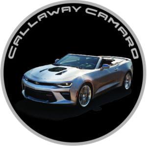 coin_40th_rear_Cam_A